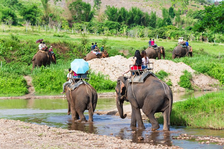 voyage thailande chiang Mai