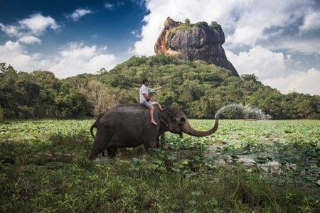 voyage Laos éléphant