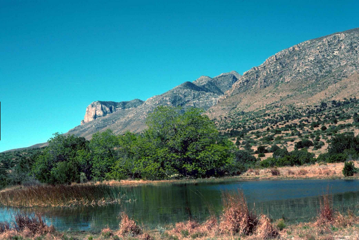 Guadalupe Mountains National Park voyage usa circuit texas